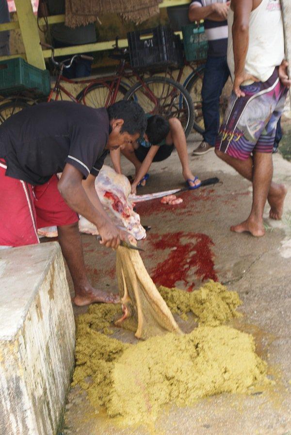 Homem abre e limpa intestino ao lado de onde garoto corta carne do boi