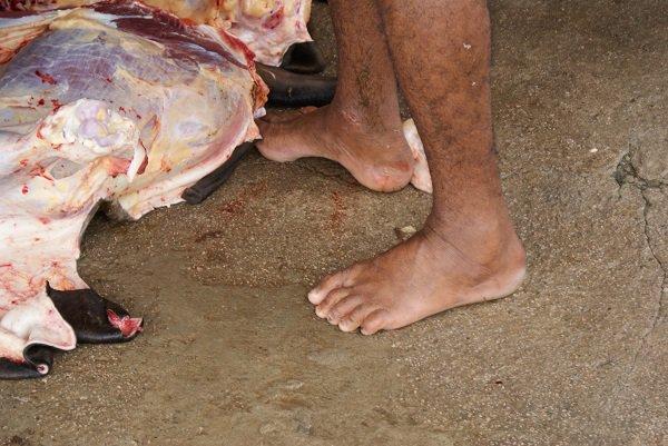 Trabalhador descalço no matadouro. Problemas de saúde e acidentes de trabalho são constantes entre adultos e crianças do setor